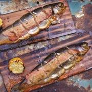 Копченый лосось и форель: 2 рецепта копчения рыбы