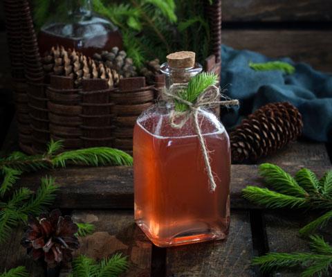Лесные рецепты: варенье из сосновых шишек и еловый сироп