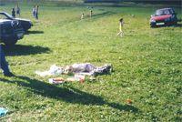Никита (КАТЕРина): А в детском саду сейчас 'тихий час'...