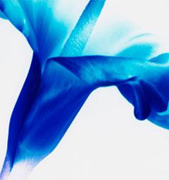 Блиц: синее и голубое