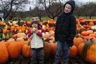 Наступает осень дети - едет Золушка в карете!