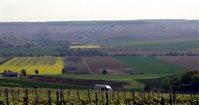 Разноцветные полосы полей Шампани (Франция)