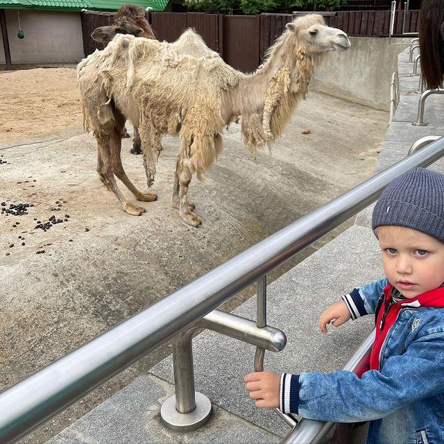 Ксения Собчак в зоопарке: 'Очень расстроили животные и родители, кричащие на детей'