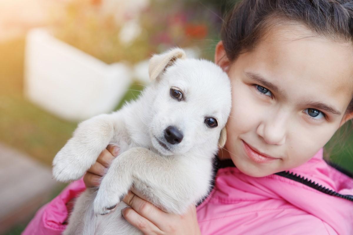Как научить ребенка гулять с собакой