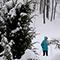 Пусть идет снег! Прогулка в Платоновском парке города Тулы
