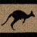 Австралия: взгляд сверху . Советы путешественникам