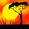 Рассказ про Богомое (Танзания)