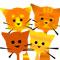 Наша большая  кошачья  сибирская семья. Рассказы о  кошках