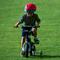 Укрощение велосипеда. Творчество читателей. Проза