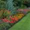 Создаем сад, привлекательный для  птиц . Садоводство