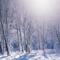 Во что играть с детьми на прогулке зимой: 16 предметов вне сезона.