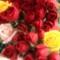Все способы защитить розы от предстоящих холодов. Садоводство