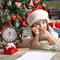 Как пережить праздник и избежать развода? 9 советов