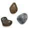 Рисунки на камнях: пляжная игра с детьми и развитие речи.