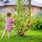 Как бороться с тлей на смородине и с долгоносиком на малине