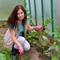 Букет витаминов - выращиваем пряную зелень в домашних условиях