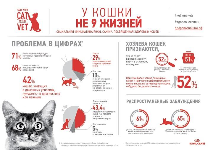 Здоровье кошки