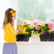 Юлия Былинова: Я садовником родился...
