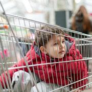 Томас Фелан: Как отучить ребенка от истерик в магазине