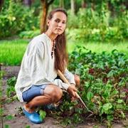 Солвей Бергрен: Почему сад и огород делает нас счастливее: 5 причин