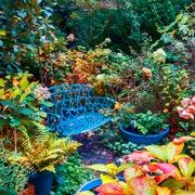 Уход за садом после дождливого лета: 7 советов