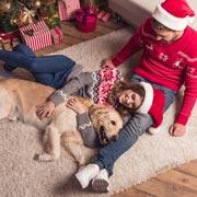 Что подарить собаке на Новый год