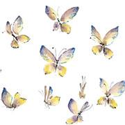 Юлия Савенкова: Как нарисовать бабочку красками: мастер-класс для начинающих