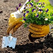 Оксана Джетер: Уход за руками и ногтями после работы в саду