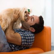 Как видит мир собака - и что значат собачьи поцелуи