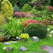Клумбы и цветники для сада - своими руками. 10 интересных способов