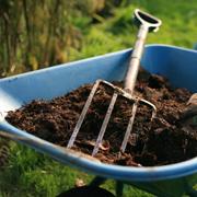 Компост и мульча: как приготовить? Дача и органические отходы
