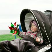 Детская коляска: люлька, прогулочная, трансформер, универсальная?