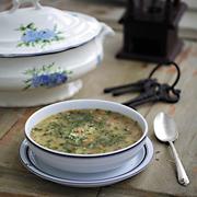 Рецепты с грибами: 2 супа и 2 закуски. Белые, лисички, шампиньоны…