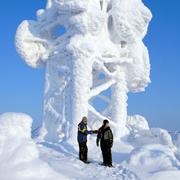 Поляева Елена: Финляндия: лыжи, горное такси, сауна и хаски. Топ-10 радостей зимнего отдыха