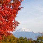 Япония: 8 самых красивых мест
