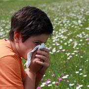 Весенняя аллергия у ребенка: правила поведения при поллинозе