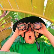 Куда поехать в отпуск семьей, если у ребенка аллергия?