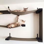 Домик для кошек: подвесная кошачья мебель (фото)