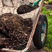 Осень на даче: как сделать органическую грядку