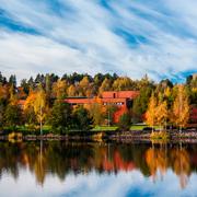 Кристина Гросс-Ло: Школьное образование в Финляндии и США: где лучше?