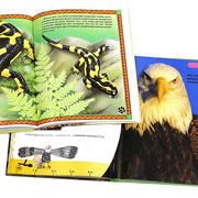 Лучшие книги о животных – для малышей и школьников