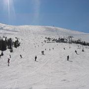 Где кататься на Новый год: 4 недорогих горнолыжных курорта