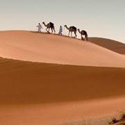 Зимой – в Эмираты: пляжи, филиал Лувра и автомобили шейхов