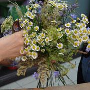 Полевые цветы: букет своими руками. Мастер-класс с фото