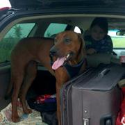 Трое в 'лодке', не считая риджбека. Москва - Черногория на машине с собакой