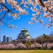 Япония: какой мы ее увидели. Жесткие кровати, много зонтиков и ни слова по-английски