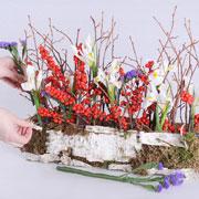 На 8 марта – своими руками: весенняя грядка в обувной коробке