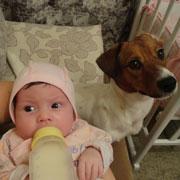 Первый настоящий друг. Купить собаку, потом родить дочку