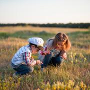 Чем занять ребенка на природе: наблюдаем за насекомыми