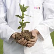 HiPP: органические продукты в детском питании